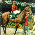 drfager4