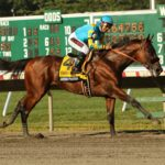 Horse Racing 2015:Haskell Invitational Day AUG 02